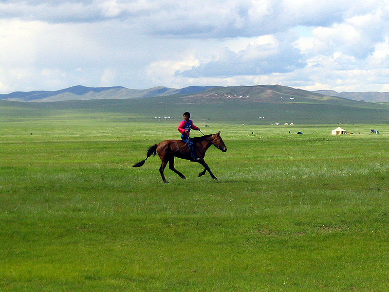 InterNations Expat Blog_Interview_Michelle in Mongolia_3